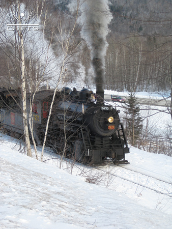 SITSD- Steam Locomotive Amidst Birch Trees and Snow- 1st